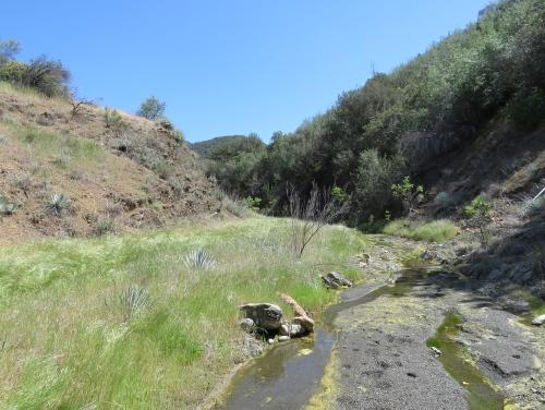 Fish Creek Manzana Trail hiking backpacking Santa Barbara Los Padres National Forest San Rafael Wilderness