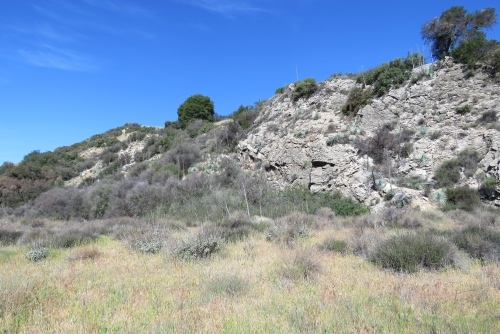 Cottam Camp Blue Canyon Trail hiking backpacking Los Padres National Forest Santa Barbara sierra blanca limestone