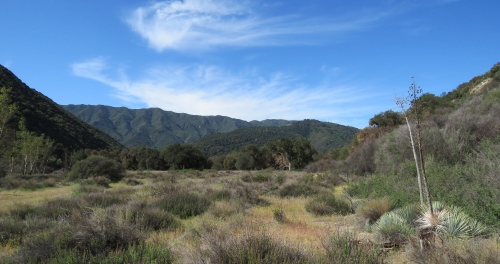 Santa Ynez River hiking backpacking Santa Barbara Los Padres National Forest P-Bar Flat Campground Blue Canyon Trail