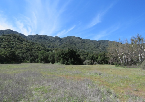 Cottam Camp Los Padres National Forest Santa Barbara hiking backpacking Blue Canyon Trail