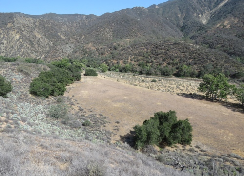 Los Padres national forest sisquoc river trail hike backpacking san rafael wilderness