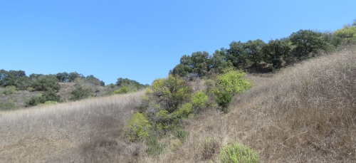 Lake Shore Trail Casitas Ojai hike