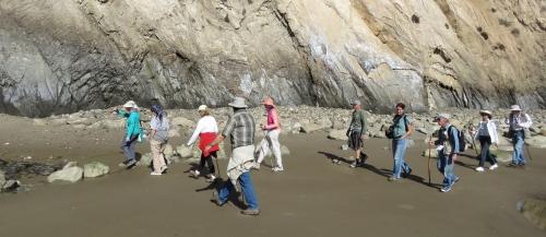 Haskell's Beach Geology walk Santa Barbara Botanic Graden Goleta