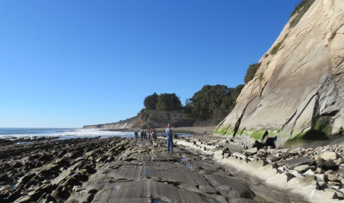 Eagle Canyon Haskell's Beach geology monterey shale Susie Bartz hike walk