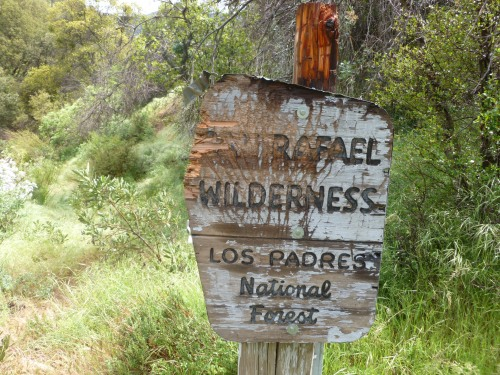 Bear sign scratches trail sign Los padres national forest San Rafael Wilderness Judell Canyon