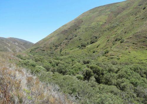 Island Creek Canyon hike Montaña de oro