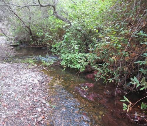 Islay Creek Montaña de oro