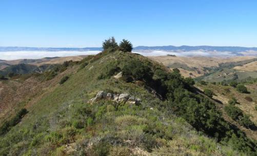 Alan Peak Trail Montaña de Oro hik Coon Creek Valencia Peak Oats