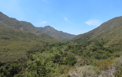Murietta Canyon Juncal Road divid Santa Ynez Mountains Los Padres National forest hike