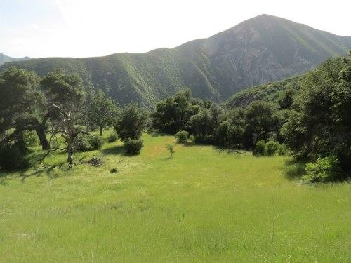 black mountain romo potrero homestead los padres national forest
