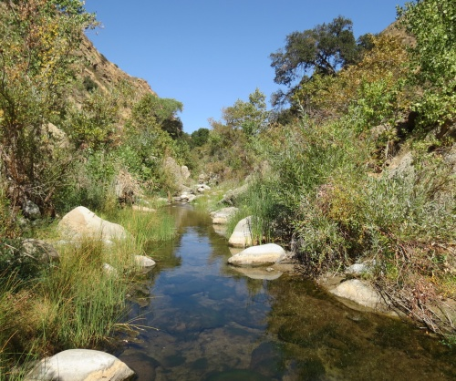 Piru Creek Sespe Wilderness Los Padres National Forest hike Cobblestone Mountain Trail