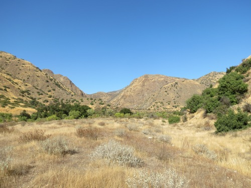 Piru Canyon Sespe Wilderness Los Padres National Forest