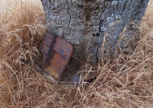 Roberts homestead Sisquoc Trail San Rafael Wilderness Los Padres National Forest Jim Blakley archeolgocial survey