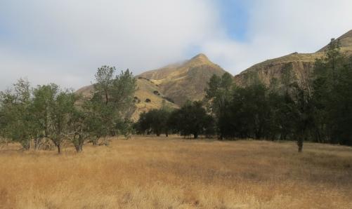 Roberts Flat Sisquoc Trail San Rafael Wilderness Los Padres National Forest hike Jim Blakley homestead Joan Brandoff archeologist