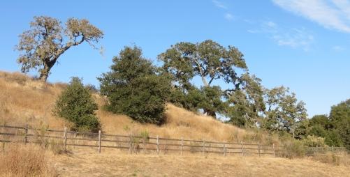 Hans Christian Andersen Park hike trail Solvang Santa Ynez Valley