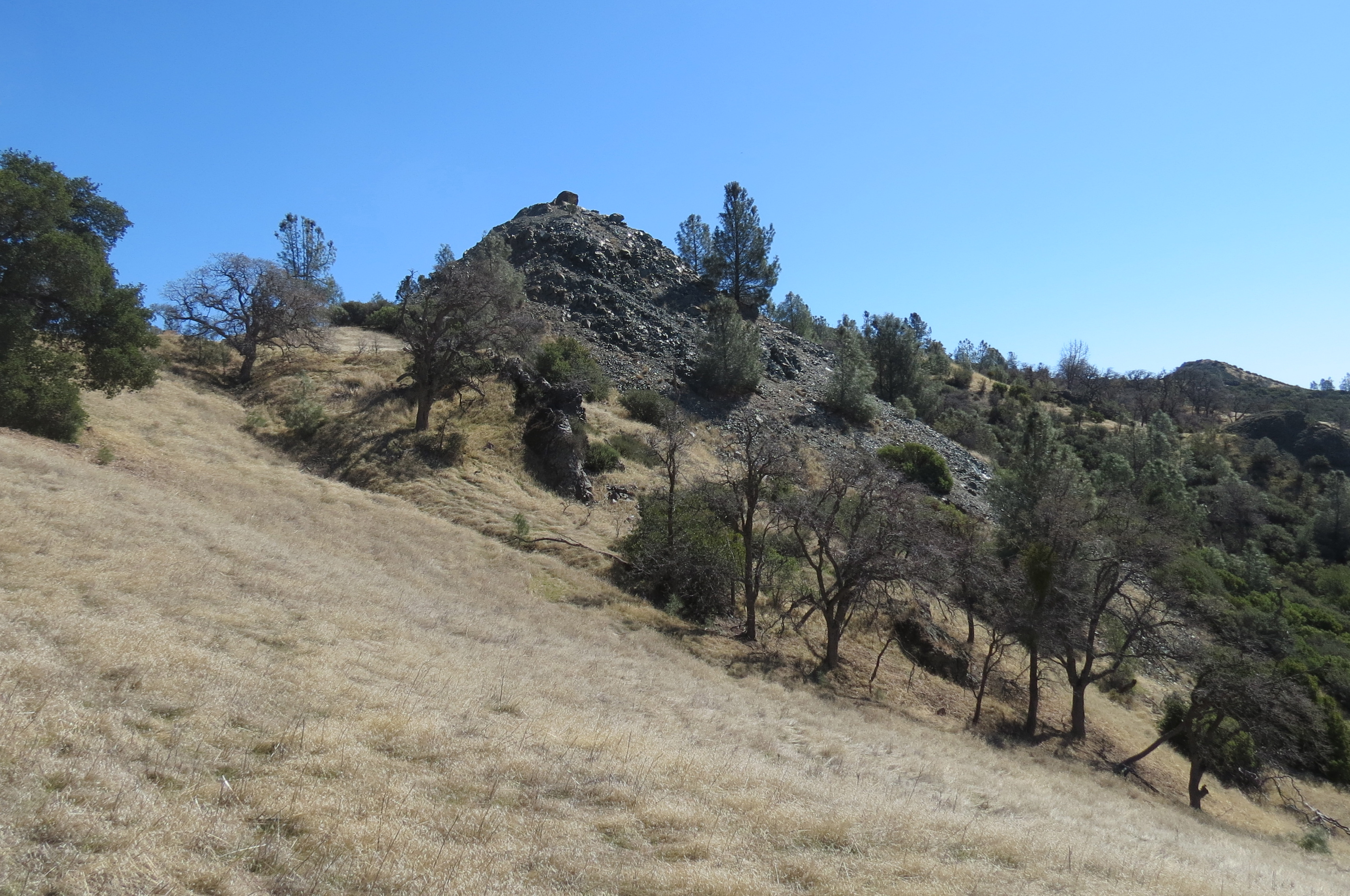 Blue Point Fir Canyon Davy Brown Trail Figueroa Mountain Serpentine Los Padres National Forest