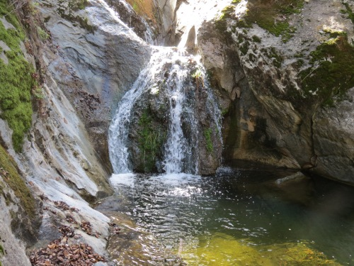 Cascade pool Fir Canyon Davy Brown Trail Los Padres National Forest