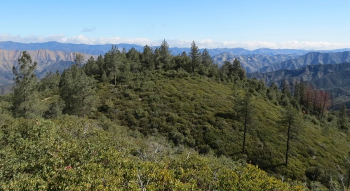 White Rock Trail Edgar Davison hike Figueroa Mountain Los Padres National Forest