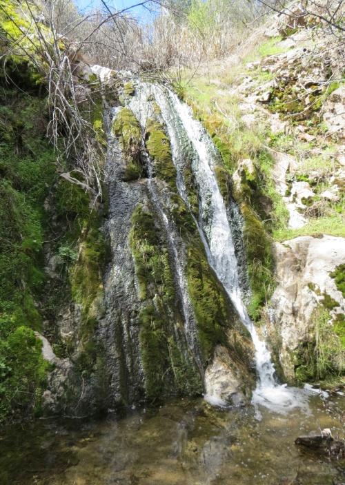 Waterfall Munch Canyon Trail Figueroa Mountain Edgar Davison Ranger Los Padres National Forest