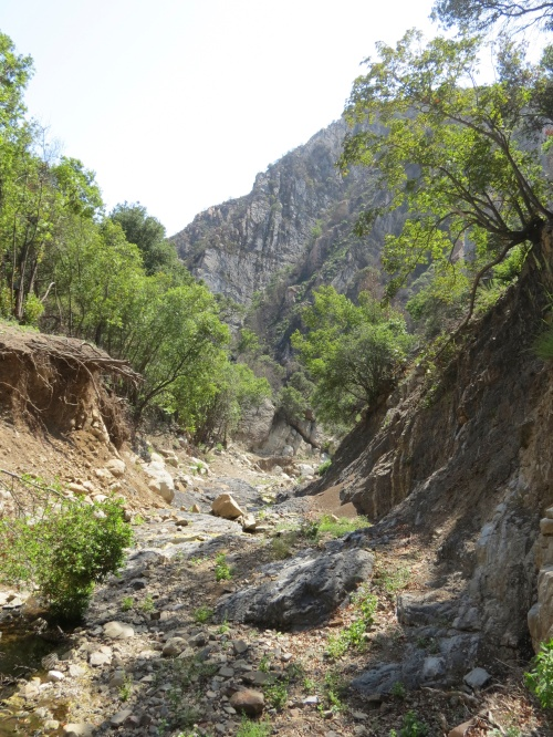 San Ysidro Canyon Trail debris flow Thomas Fire damage Santa Barbara montecito hike los padres national forest