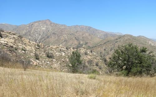 McMenemy Trail Thomas Fire Santa Barbara Montecito hike Los Padres National Forest