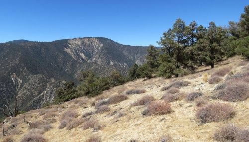 Eagle Rest Peak hike trail san emigdio mountains los padres national forest