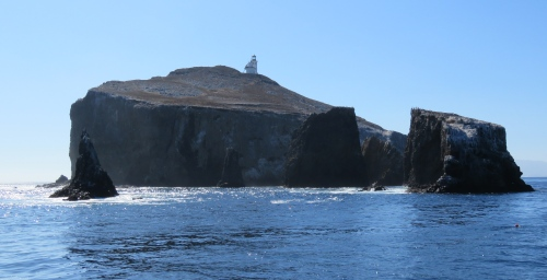 Anacapa Island Santarosae ice age Channel Island National Park