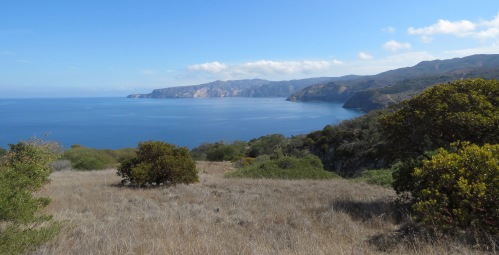 Pelican Bay Trail Western Santa Cruz Island hiking Nature Conservancy
