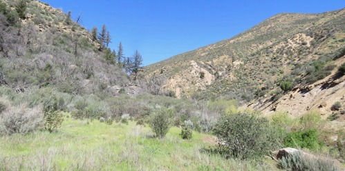 Deal Junction Camp Rancho Nuevo Canyon Trail Dick Smith Wilderness Los Padres National Forest