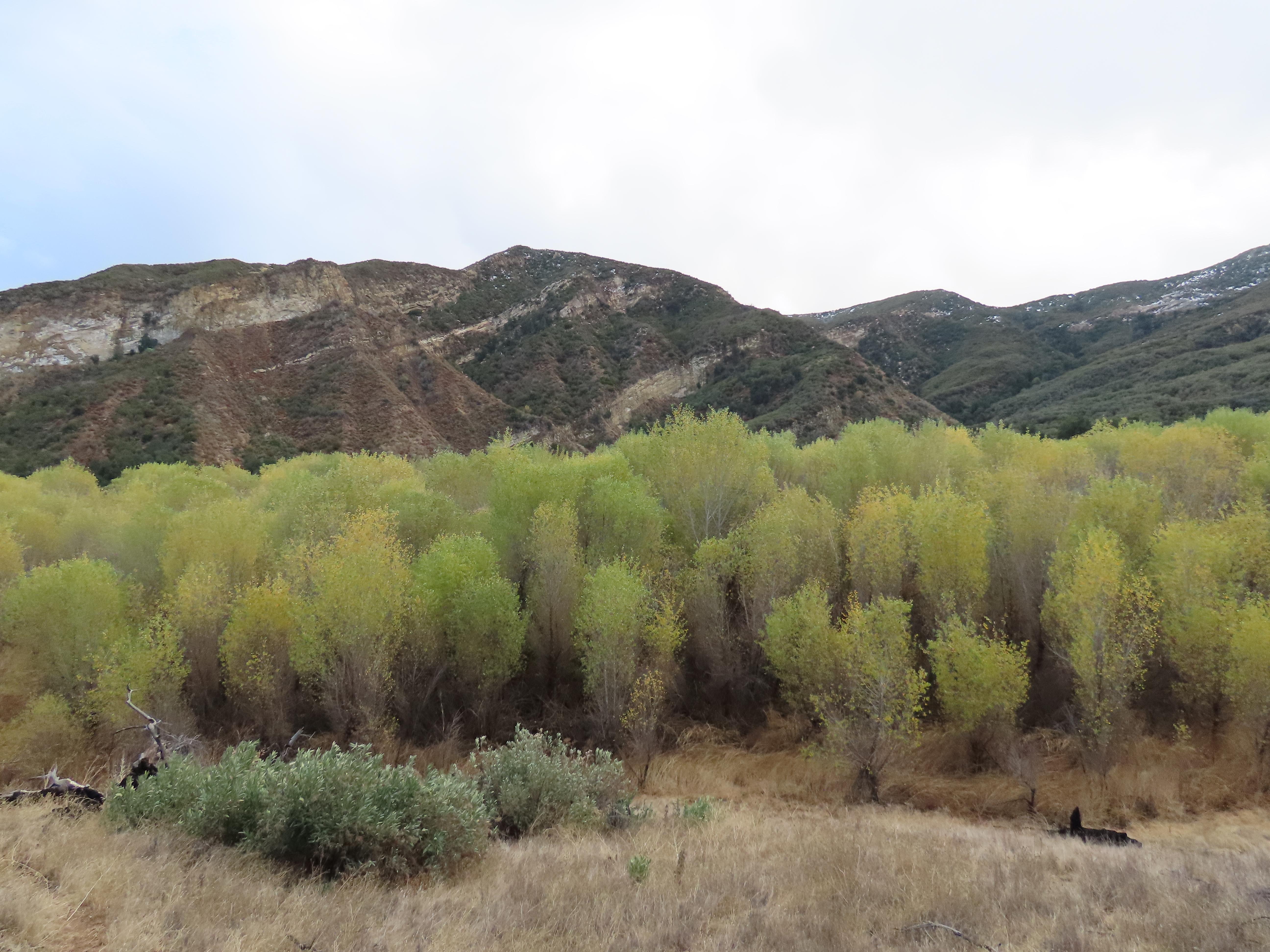 Cottonwoods Pothole Trail Sespe Wilderness Los Padres National Forest