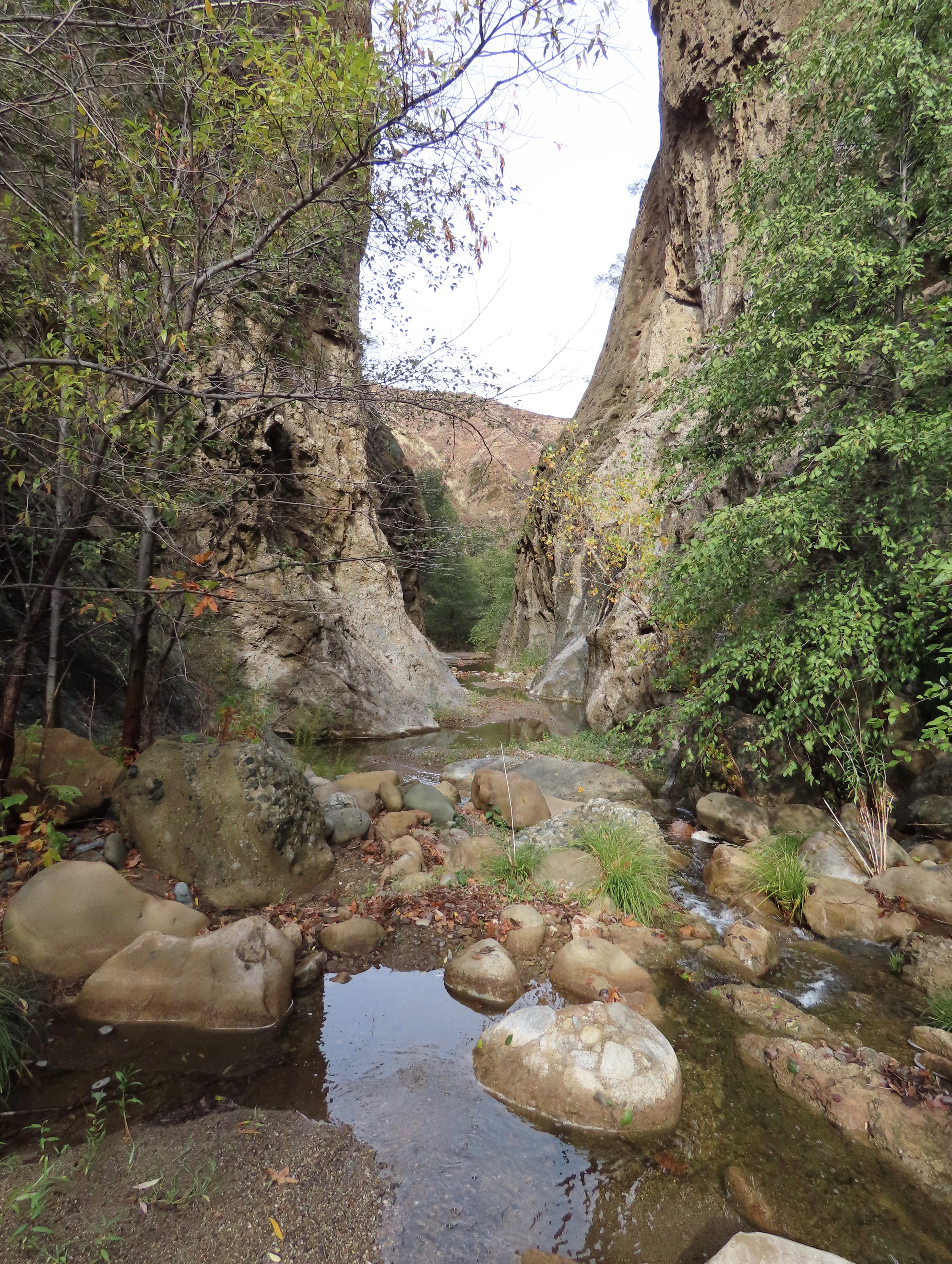 Devil's Gateway Agua Blanca Creek Trail Sespe Wilderness Los Padres National Forest