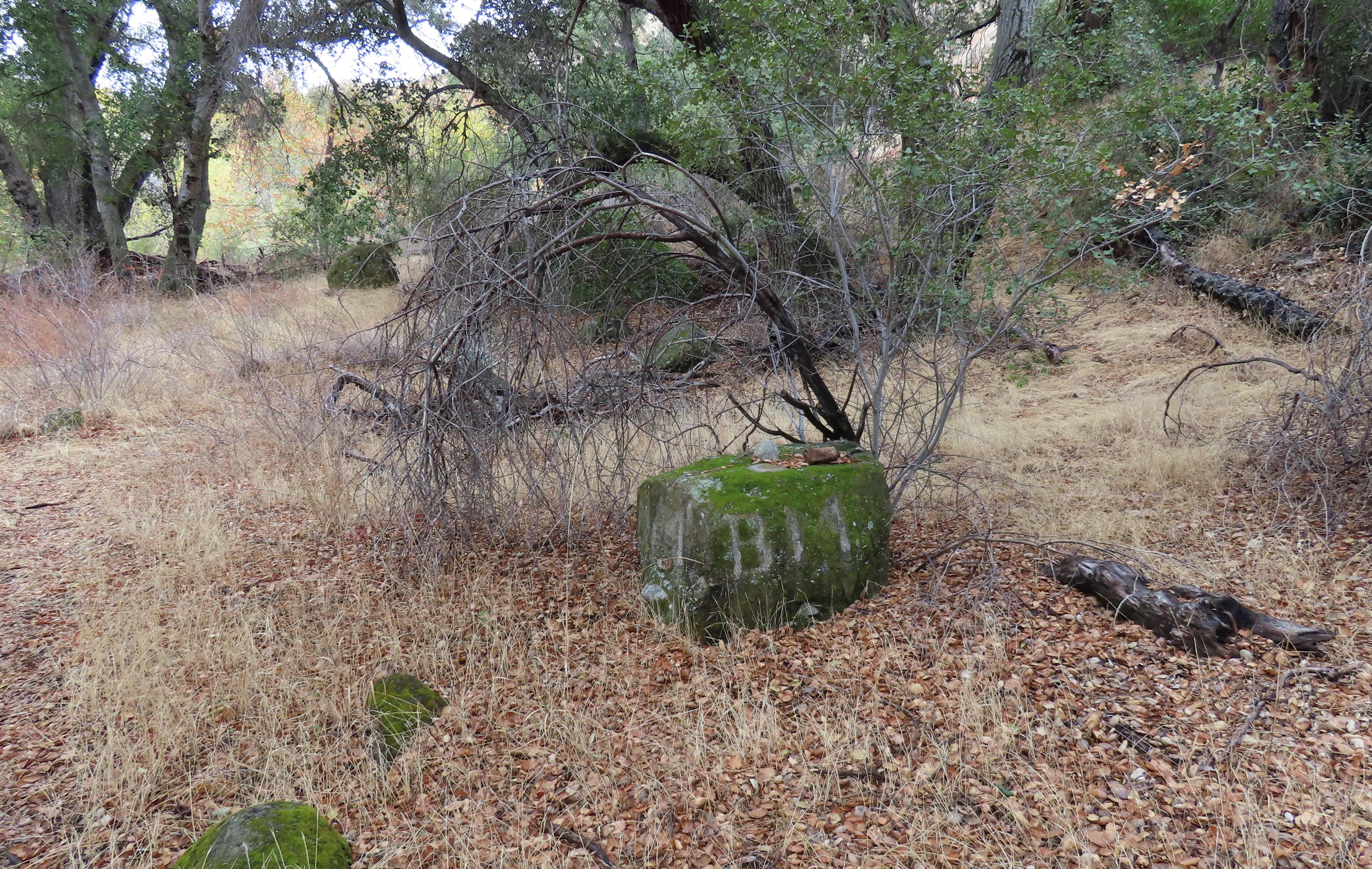 Hollister bench mark Agua Blanca Trail sespe wilderness los padres national forest