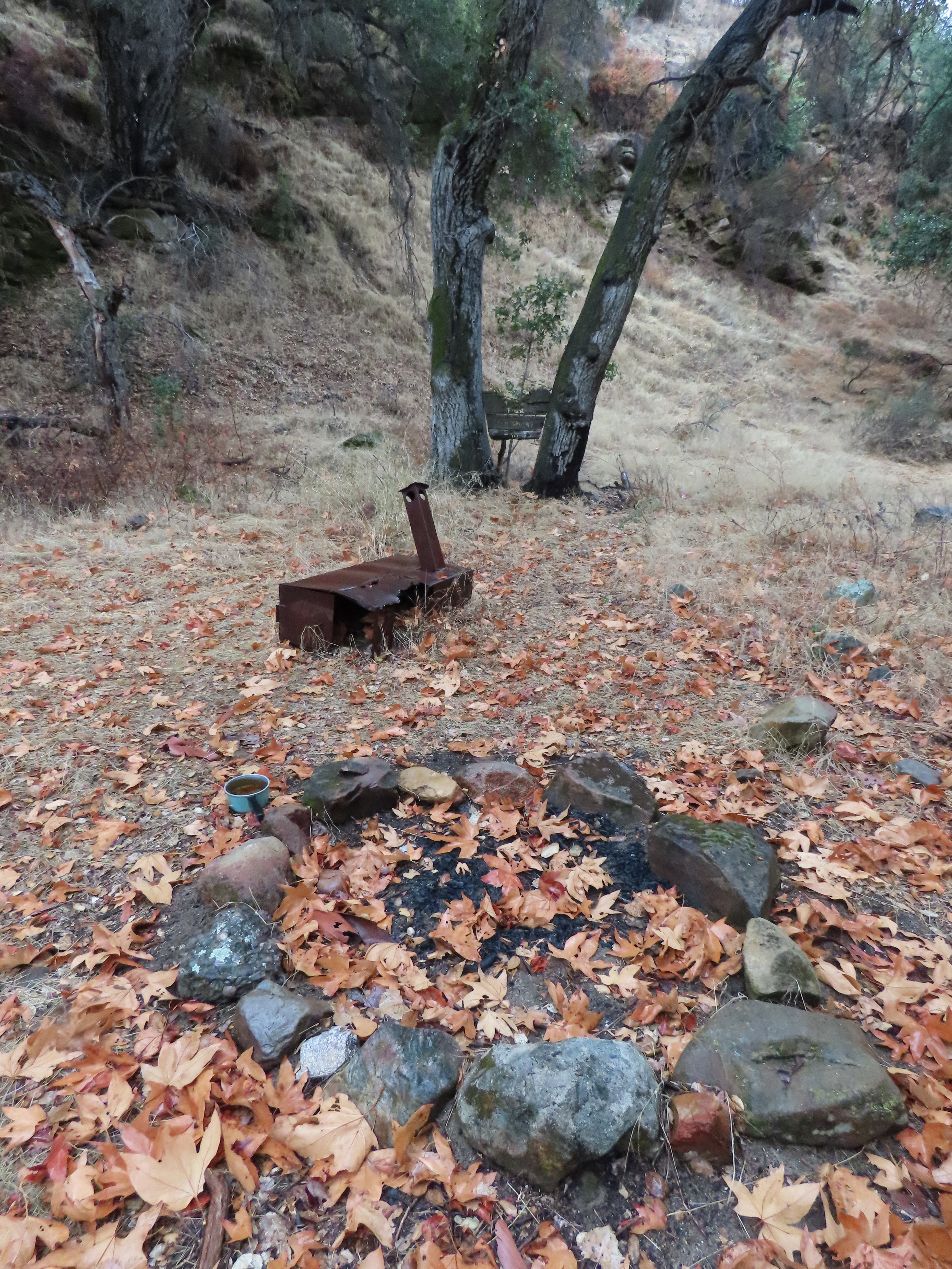 Cove Camp Agua Blanca Trail sespe wilderness los padres national forest