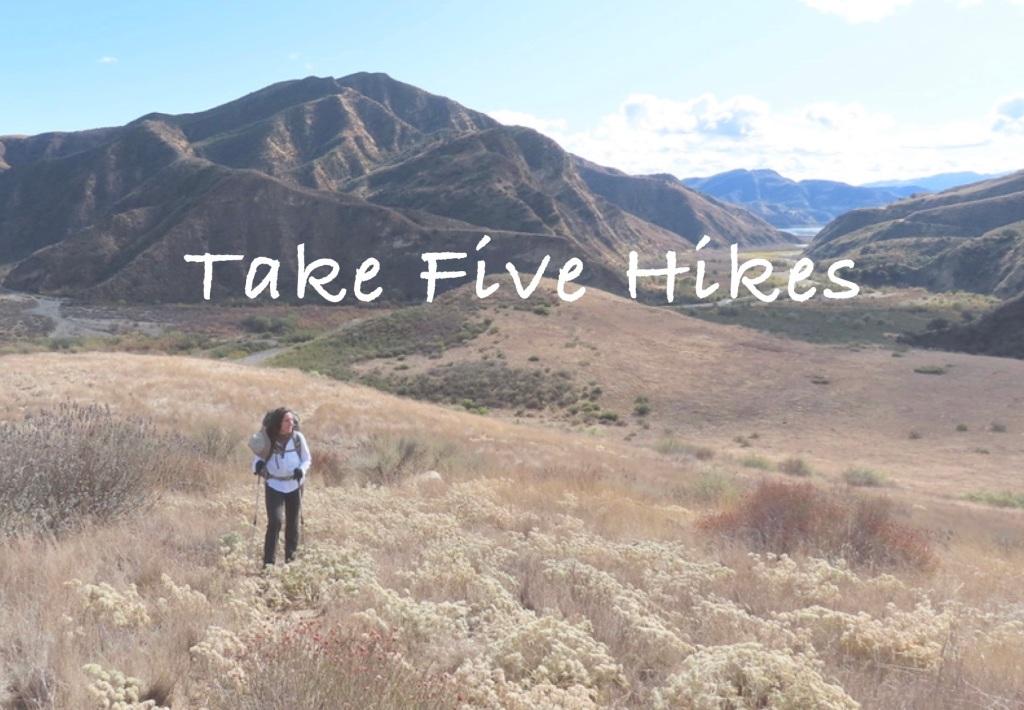 Guided hikes santa barbara geology edible medicinal plants mindfulness nature connection wilderness awareness skills